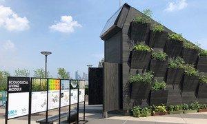 منزل صغير صديق للبيئة تم تصميمه بالتعاون بين منظمة الأمم المتحدة للبيئة ومركز النظم البيئية في الهندسة المعمارية في جامعة ييل الاميريكية.