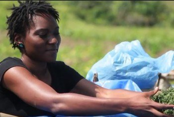 El programa de la OIT ha ayudado a mujeres y hombres congoleses a conseguir empleo.