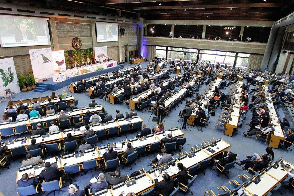 联合国环境署位于内罗毕的总部会场。