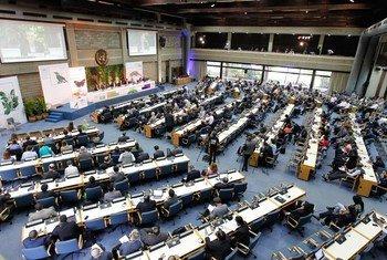 L'Assemblée des Nations Unies pour l'environnement en décembre 2017 à Nairobi, au Kenya.