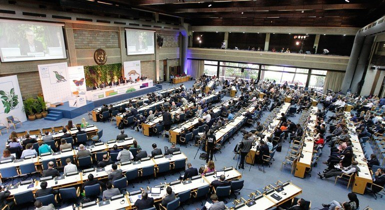 'Honest data' and new ideas key to successful outcome, says UN Environment Assembly President
