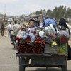 Les familles des régions rurales de Quneitra sont déplacées et cherchent refuge dans des zones ouvertes et des camps. Près de 183.000 personnes sont désormais déplacées dans le sud-ouest de la Syrie.