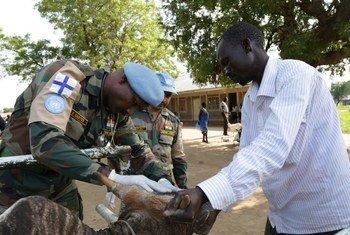 Walinda amani kutoka India wakipatia mifugo matibabu huko Sudan Kusini