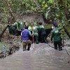 Группа экологов оценивает состояние мангрового леса Сундарбан в Бангладеш