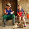 Trabajadores de la Granja Nueva Colombia comienzan a trabajar en el campo desde el amanecer.