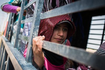 Manar, 13, sits in a truck that will take her to work a second shift in a nearby potato field, in Fayda tented settlement, Bekaa Valley, Lebanon, on 5 June 2014. Manar fled Idlib with her family in 2011.