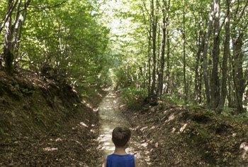 Un enfant marchant dans une forêt.