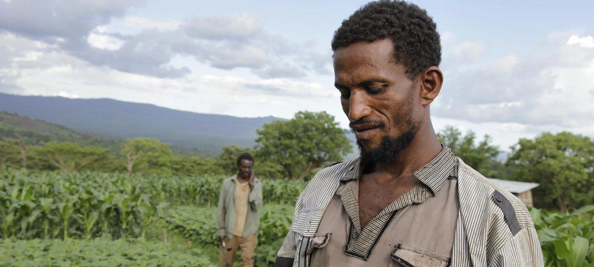 Think beyond farm jobs' to reach sustainable development, UN