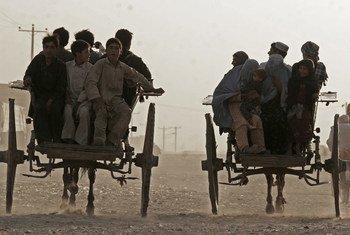 Un cessez-le-feu conditionnel a été annoncé en Afghanistan pour la fête de l'Aïd al-Adha. Dans la ville d'Herat, les gens continuent leur vie quotidienne.