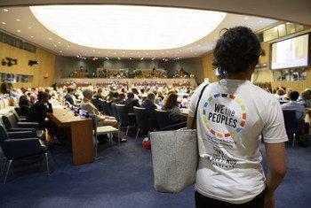 La conferencia del departamento de información pública de la ONU y las ONGs.