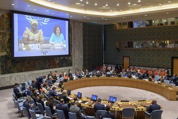 Security Council Considers Situation concerning the Democratic Republic of the Congo