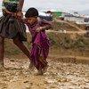 Des réfugiés rohingyas à Cox's Bazar, au Bangladesh.
