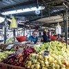 2017年9月,前南斯拉夫马其顿共和国首都斯科普里的一家蔬果集市。
