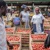 2018年6月28日,加纳阿克拉,几名妇女正在阿博布罗西(Agbogbloshie)市场售卖番茄。