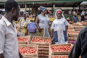 Wanawake wakiuza nyanya katika soko nchini Ghana barani Afrika.