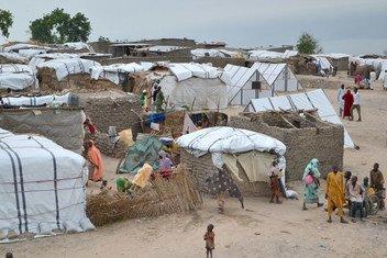 Vue sur la ville de  Rann, dans l'Etat de Borno, dans le nord-est du Nigéria.