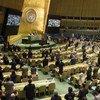 Vista panorámica de la Asamblea General.