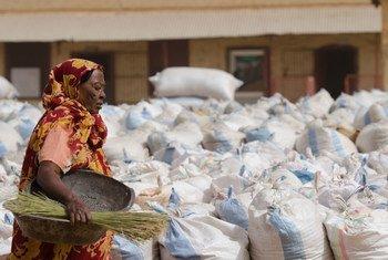 A doação vai permitir comprar arroz, legumes e outros alimentos para refeições escolares e rações alimentares