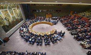 安理会就朝鲜核不扩散问题举行的辩论。