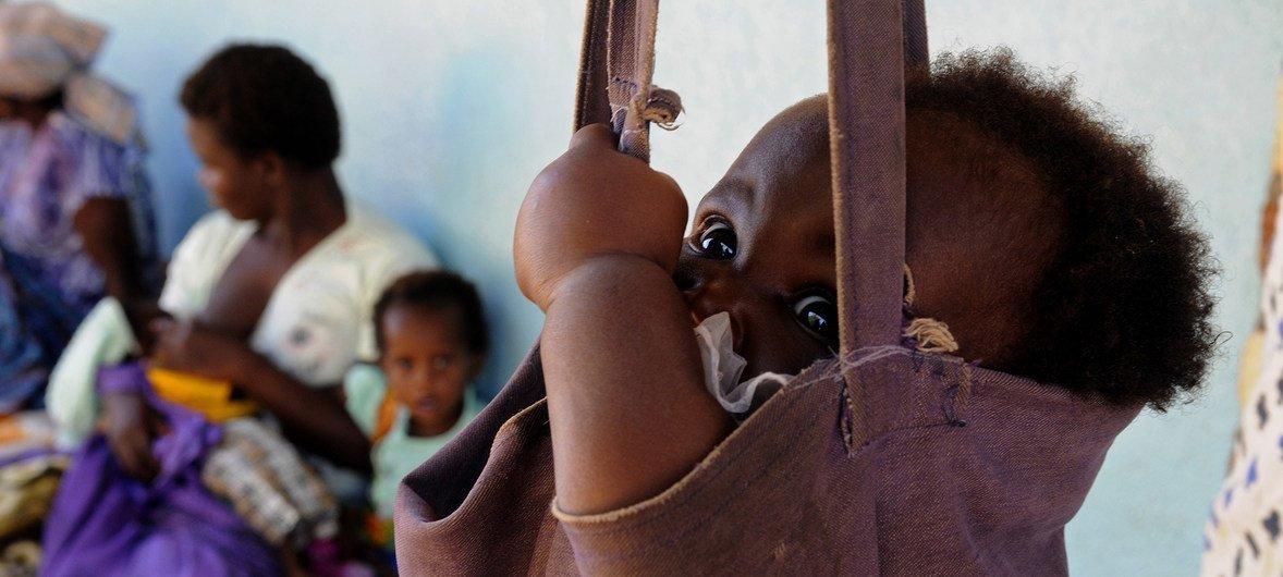 Maláui registou um aumento de 1,1 milhão de pessoas em grave situação de insegurança alimentar