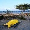 Más de mil personas han muerto a causa del terremoto y el tsunami que golpeó Sulawesi en Indonesia el 28 de septiembre de 2018.