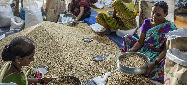 Des femmes trient des céréales sur un marché de Mumbai, en Inde