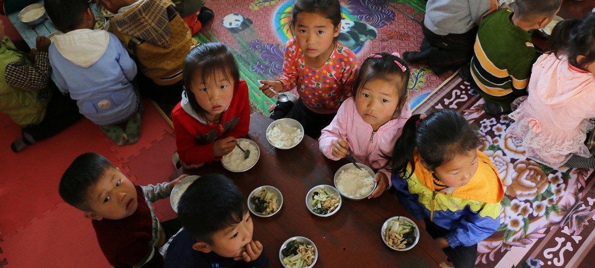 A agência estima que sejam necessárias pelo menos 300 mil toneladas de alimentos, avaliadas em US$ 275 milhões, para ampliar a assistência humanitária à Coreia do Norte.