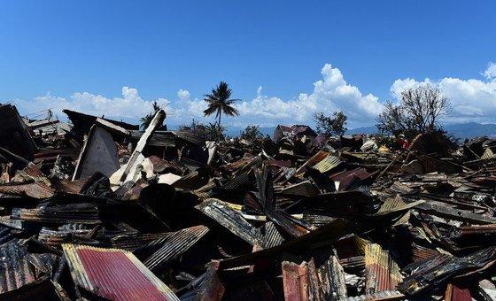 2018年9月28日,印度尼西亚中苏拉威西省帕鲁西部,受到地震和海啸破坏的巴拉罗亚国家公园(Balaroa National Park)。