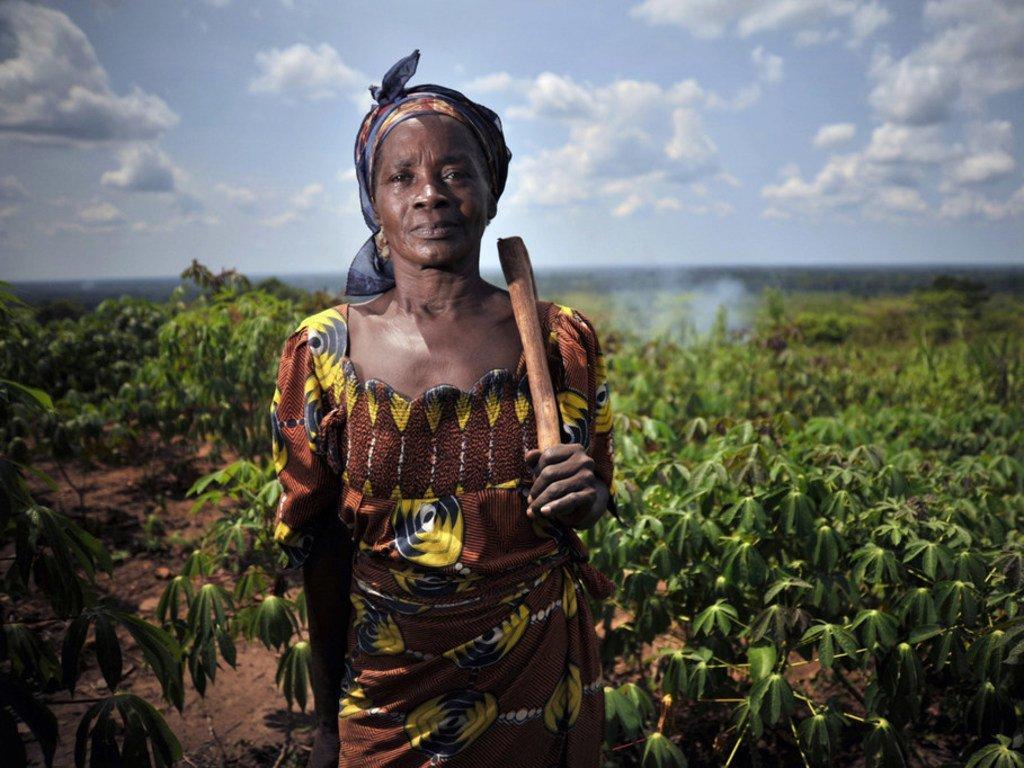 Une femme dans un champ de manioc à Mbaiki, en République centrafricaine.