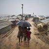 Mais de 700 mil pessoas atravessaram do oeste de Mianmar para Bangladesh desde agosto de 2017
