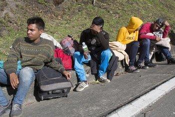 """Los venezolanos que salen del país cruzan a Colombia para quedarse o proseguir hacia Ecuador y Perú. Les llaman """"caminantes"""" porque llegan a andar hasta 11 horas al día, cruzando puertos de montaña a 3400 metros y soportando temperaturas gélidas."""