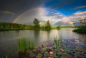 Un arcoiris se forma en un horizonte soleado.