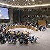 Le Coordonnateur spécial pour le processus de paix au Moyen-Orient, Nickolay Mladenov, s'exprimant devant le Conseil de sécurité sur le Moyen-Orient. (archive - octobre 2018)