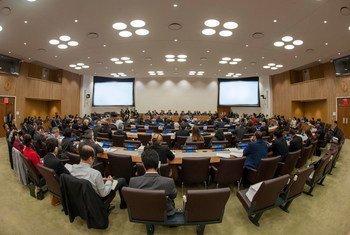 联大第五委员会--行政和预算委员会举行会议讨论联合国预算。(资料图片)