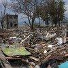 УВКБ: масштабы разрушений на Сулевеси «просто невозможно себе представить».