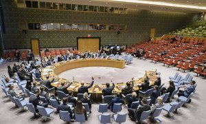 The Security Council unanimously adopts resolution 2439 concerning the Ebola outbreak in the Democratic Republic of the Congo (DRC).
