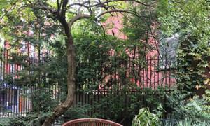 位于纽约市东村的一处社区花园。