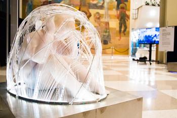 """Exibição artística """"Crianças no Casulo Cibernético""""."""