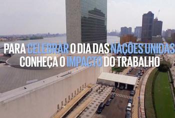 Dia da ONU