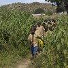 2017年,喀麦隆北部的学生在一场校际运动会结束后返回学校。