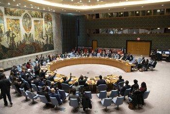 Réunion du Conseil de sécurité sur la situation en Erythrée et en Somalie. 14 novembre 2018.