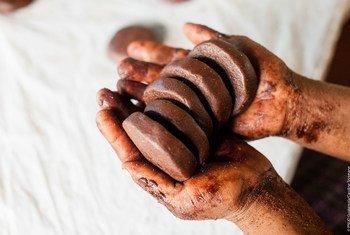 De acordo com o Programa das Nações Unidas para o Meio Ambiente é importante pensar sobre a origem do chocolate e o seu impacto ambiental.