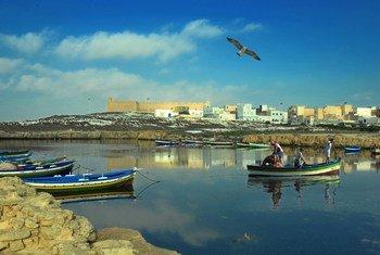 A mudança climática está impactando a zona costeira da Tunisia, afetando os humanos e também a biodiversidade marinha.