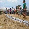 Un camp de réfugiés rohingyas à Cox's Bazar, au Bangladesh.