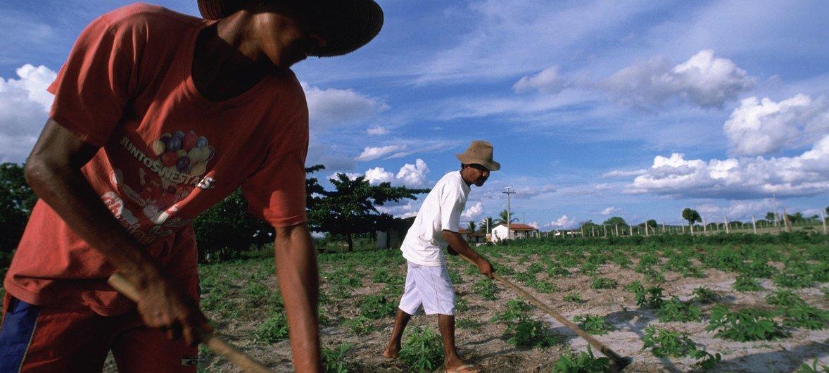 Desafios das economias de renda média incluem mobilizar fundos para combater a pobreza.