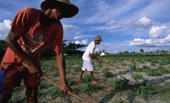 Solstícios e equinócios simbolizam a fertilidade da terra e dos sistemas de agricultura e produção de alimentos