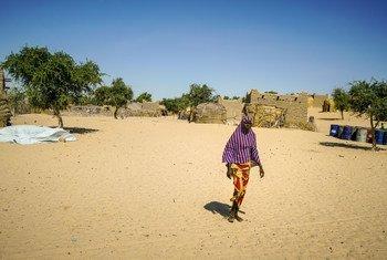 En el pueblo de Liwa, en Chad, la madera se ha convertido en un preciado recurso. Las mujeres se han movilizado para ayudar en un proyecto de reforestación. El lago de Chad se reducido de 25.000 kilómetros cuadrados a 2000 kilómetros cuadrados.