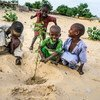 In the reforestation site of Merea, Chad, children are planting acacia seedlings for the future In the past 50 years, Lake Chad basin shrank from 25,000 square kilometers to 2,000square kilometers.