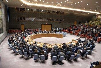 Совет Безопасности собрался для обсуждения ситуации в Керченском проливе