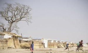 Mafa, a camp for internally displaced people in Borno State, north-east Nigeria, January 2018.